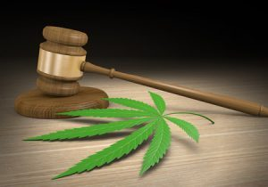 NYS sued by established Med Mar dispensaries